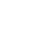 icon_trans_custom