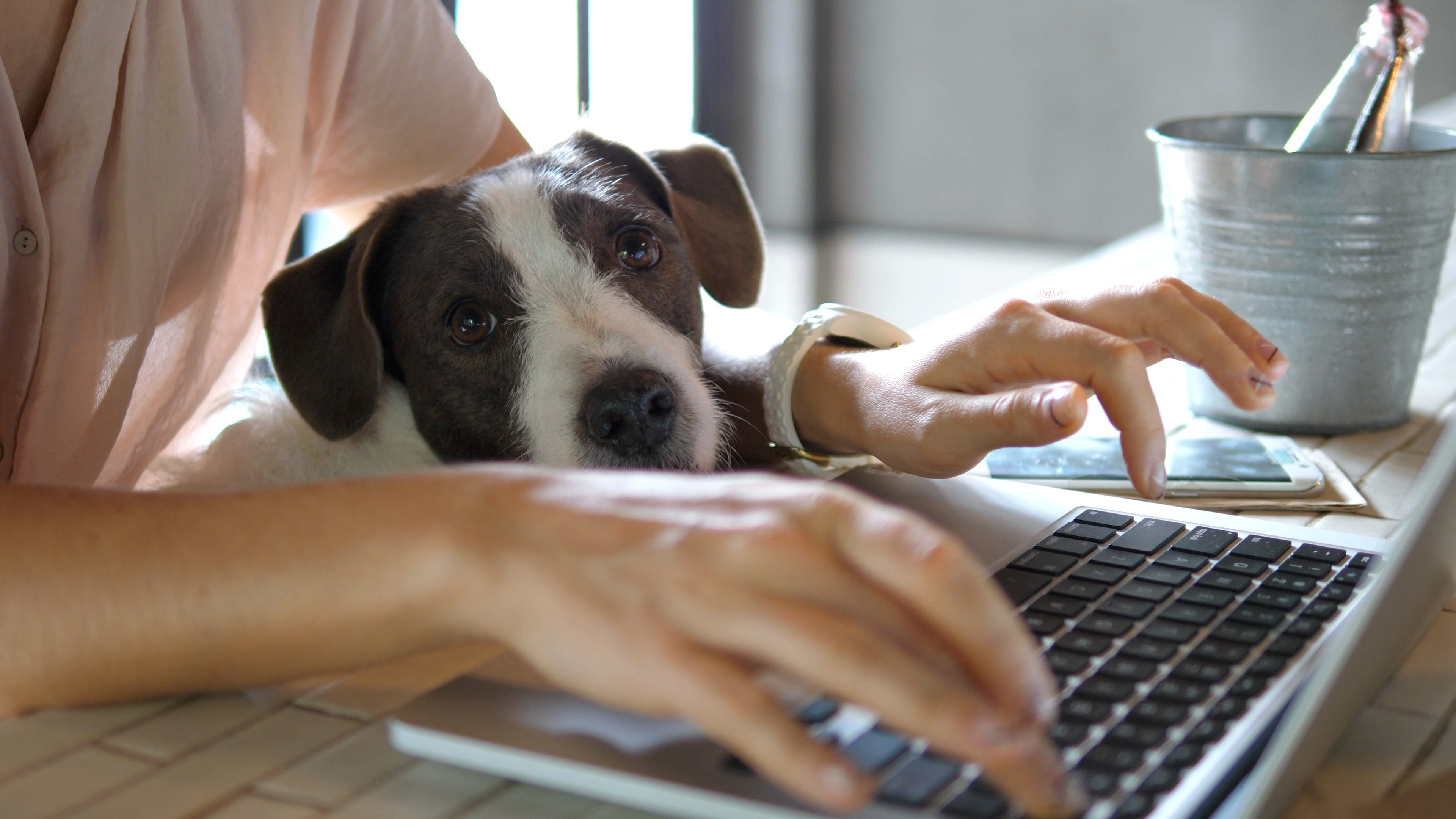 How remote working could revolutionise your business
